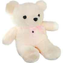 Teddy Bear Hidden Cam
